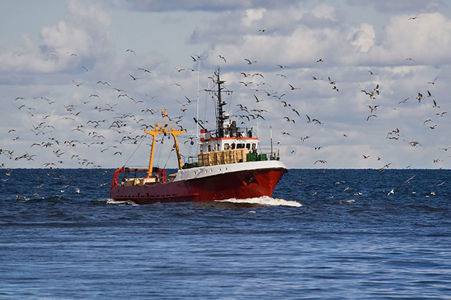 trawler picture